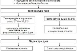 Пошаговая схема самолечения лучевого цистита