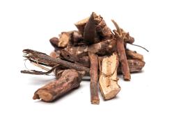 Лечение цистита корнем шиповника