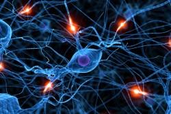 Расстройства работы центральной нервной системы - причина гиперактивности мочевого пузыря