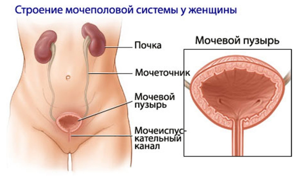 Лечение гайморита у ребенка 3 лет антибиотик