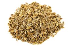 Польза семян укропа при цистите